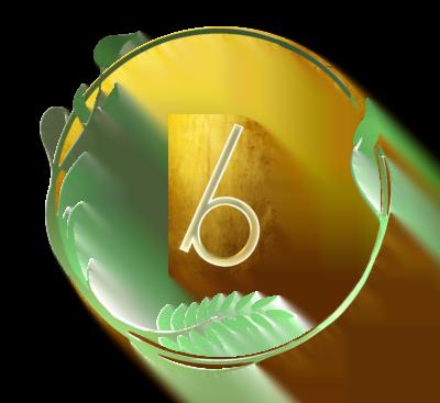 logo firmy Baobaby